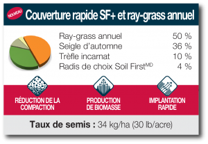 Couverture rapide SF et ray-grass annuel