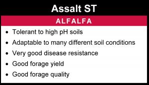 Assalt ST