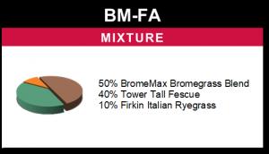 BM-FA