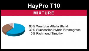 HayPro T10