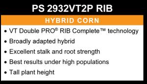 PS 2932VT2P RIB