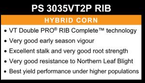 PS 3035VT2P RIB