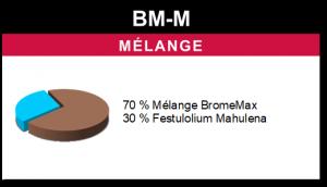 Mélange BM-M
