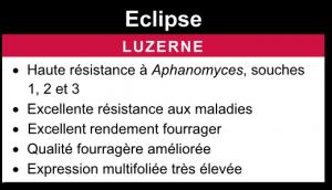 Luzerne Eclipse