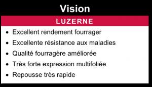 Luzerne Vision