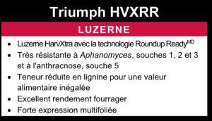 Luzerne Triumph HVXRR