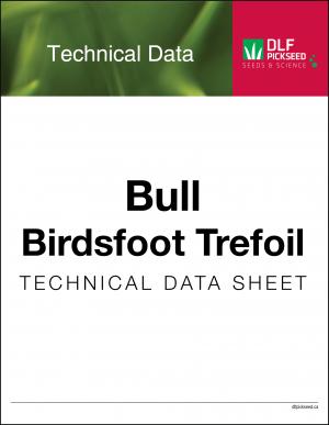 Tech Sheet – Bull Birdsfoot Trefoil