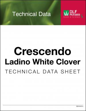 Tech Sheet – Crescendo Ladino White Clover