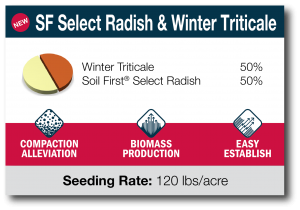 SF Select Radish & Winter Triticale