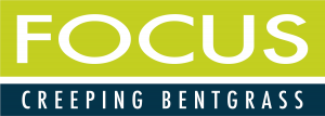 Focus Bentgrass