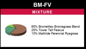 BM-FV