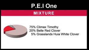 P.E.I One