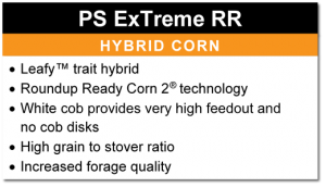 PS ExTreme RR