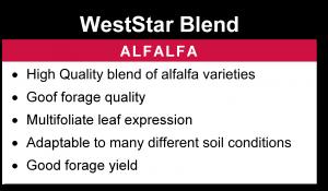 WestStar Blend