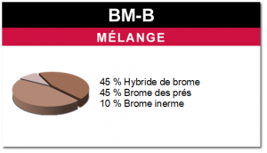 Mélange BM-B