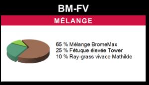 Mélange BM-FV