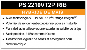 PS 2210VT2P RIB
