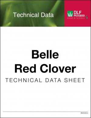 Tech Sheet – Belle Red Clover
